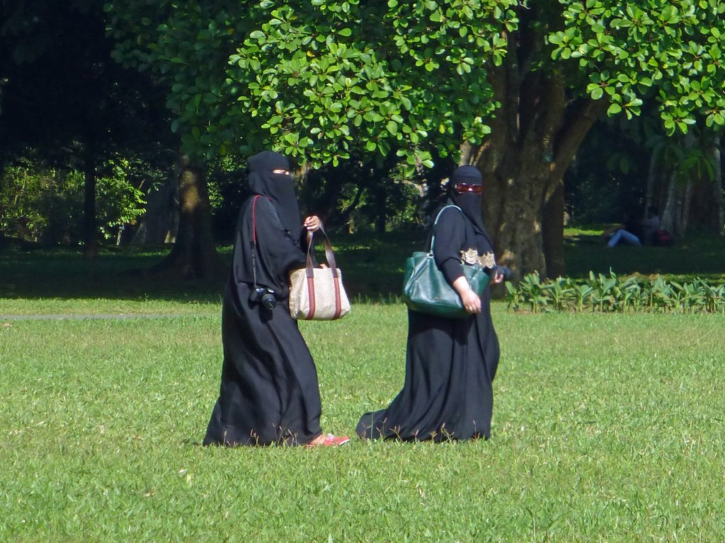 Is the Danish 'burqa ban' an infringement on Muslim women's rights?